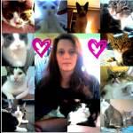 Tammy Debenedictis Profile Picture