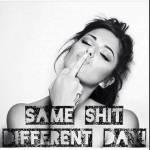 Same Shit, Different Day Profile Picture